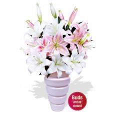 6 Lily Bouquet Vase Bouquet