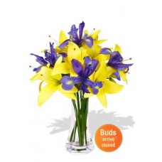 Asiatic Lily and Iris Bouquet Vase Bouquet